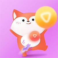 小狐狸55100036